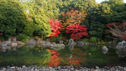 Traditional Japanese garden